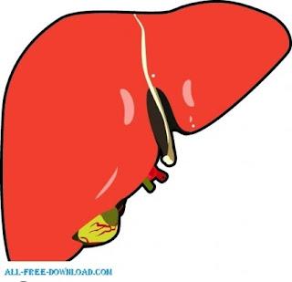 hígado,transaminasas,hemocromatosis,ferritina alta