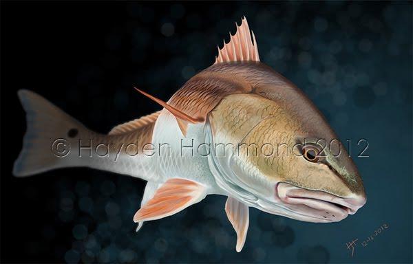 Redfish Inspection