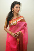 Shruti haasan new photos in saree-thumbnail-12