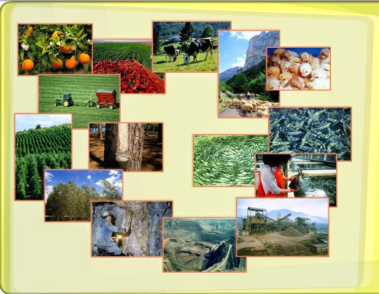 http://www.primaria.librosvivos.net/archivosCMS/3/3/16/usuarios/103294/9/6EP_Cono_en_ud14_Sectors_1/frame_prim.swf