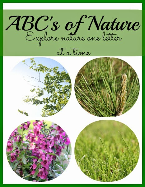 Explore Nature one letter at a time with a collection of nature themed ideas from A to Z