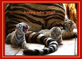 Un felice e prospero 2017 a tutti