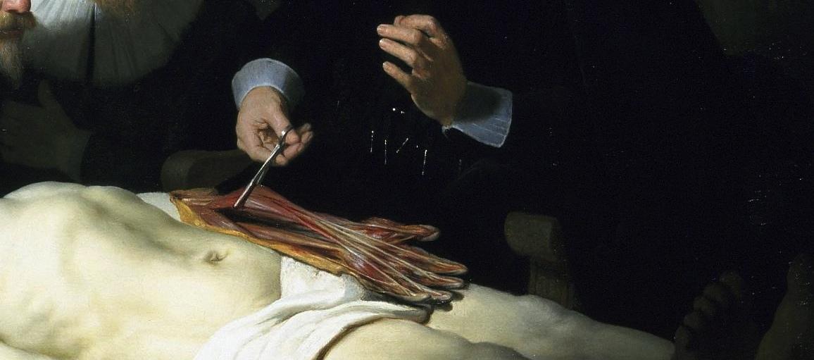 Fantástico Lección De Anatomía De Rembrandt Componente - Imágenes de ...