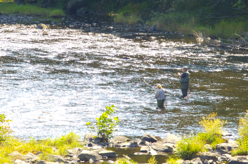 Fishing on the farmington river in collinsville ct for Farmington river fishing