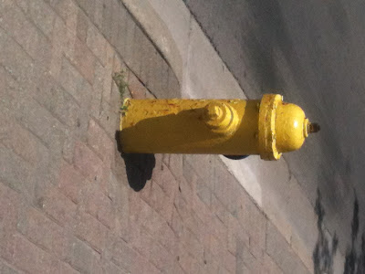 Fire Hydrant photo by © Ana Tirolese