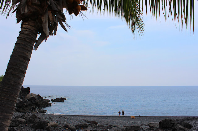 Black Pebble Beach, South Kona (c) Rachel Edwards