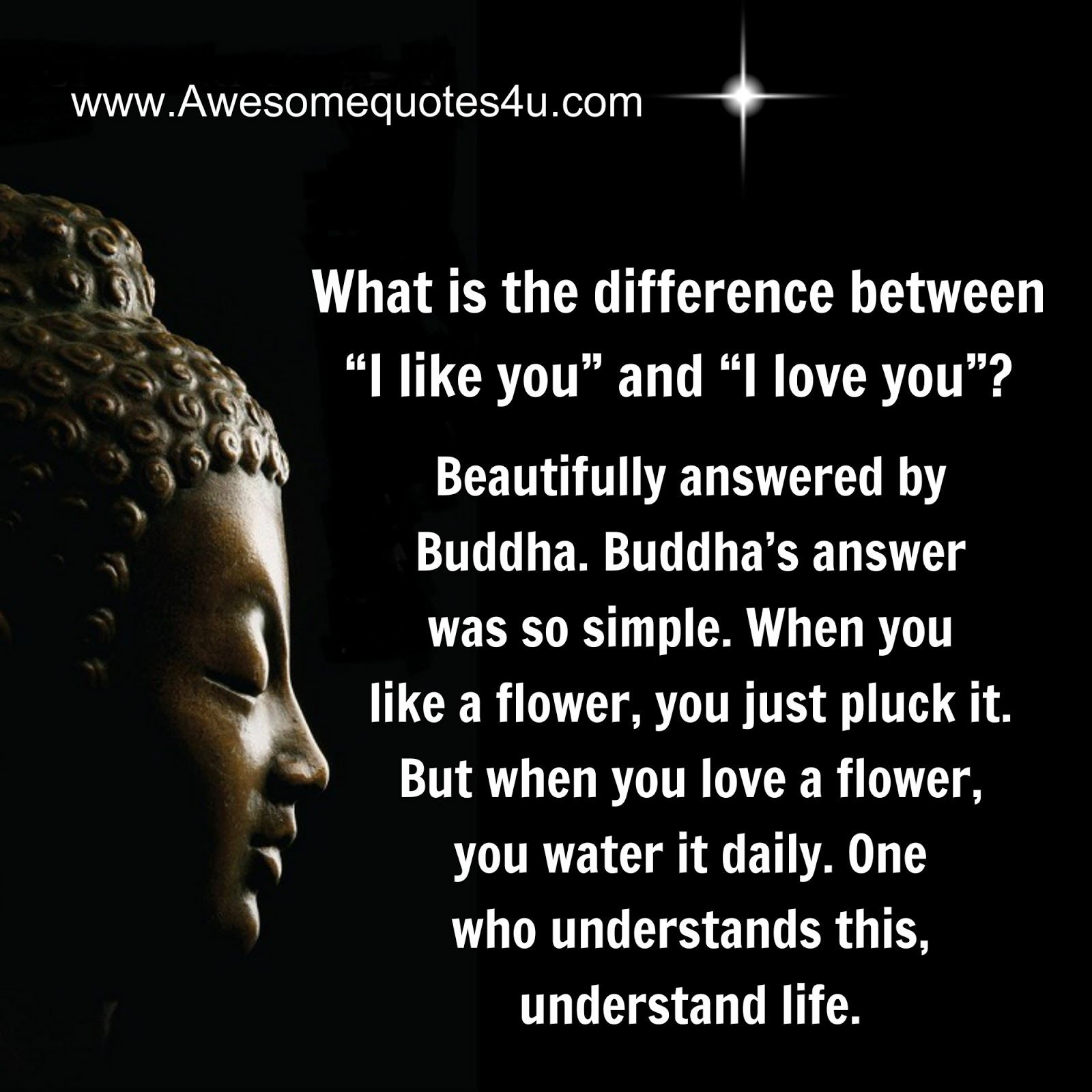 Buddhist Quotes On Love Best Beautiful Quotes Difference Between I Like You And I Love You