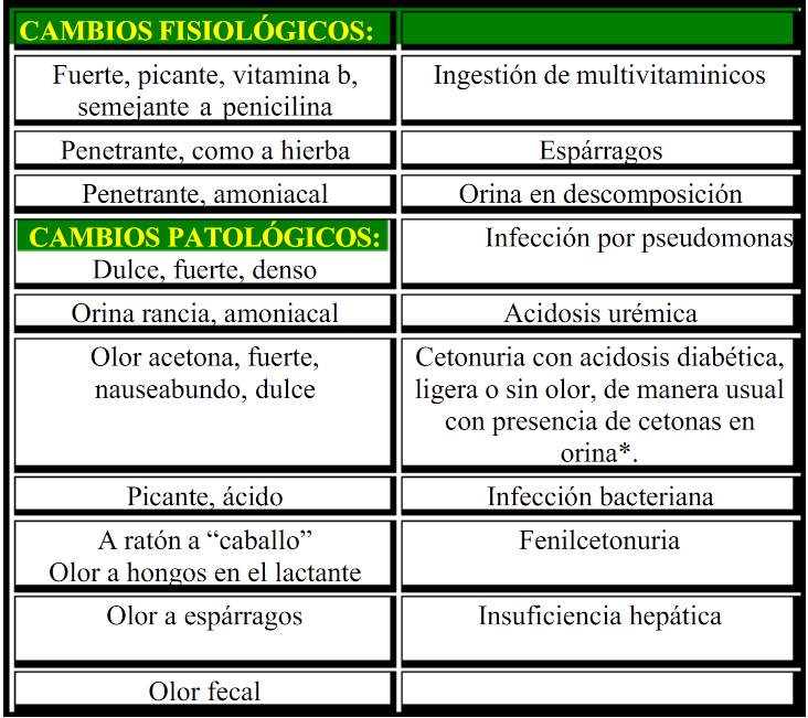 acido urico dana rinones acido urico alto fitoterapia acido urico alto limon