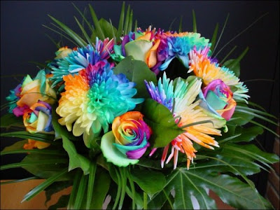 4 'قوس قزح' من أجمل الزهور التي قد تراها   حقن الزهور بصبغات مختلفة