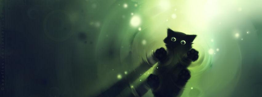 Cute cg cat facebook cover