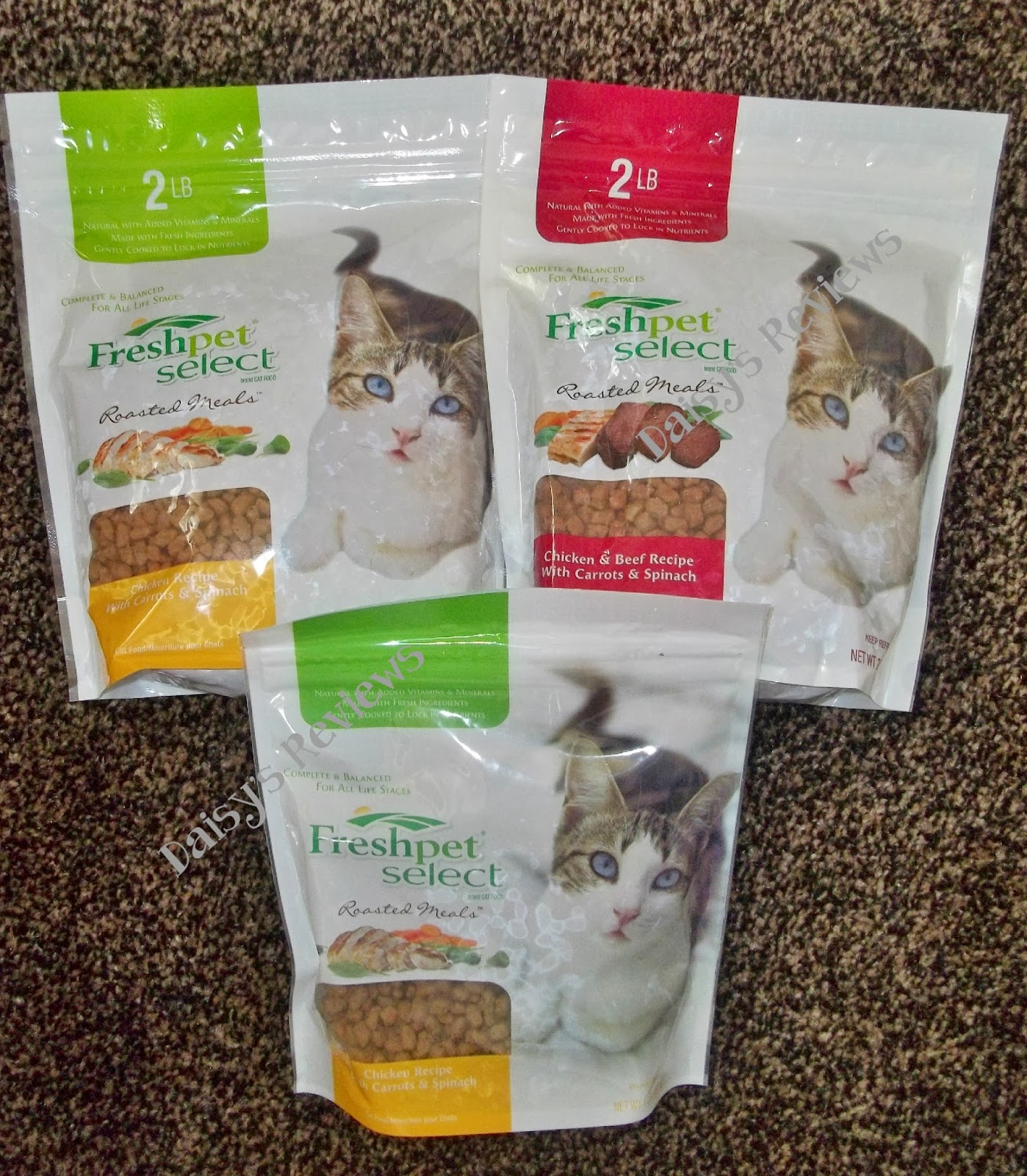 Welcome To Daisy S Reviews Freshpet Cat Food Review