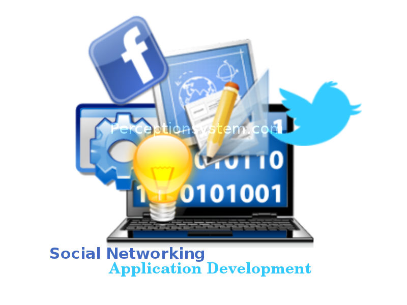 Social Networking Application Developement