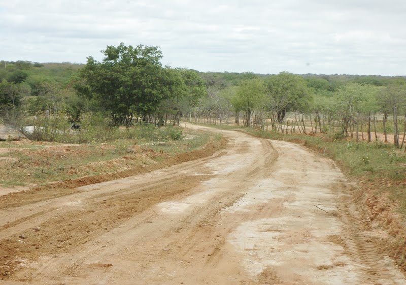 Prefeitura de Ouro Velho inicia recuperação de estradas vicinais