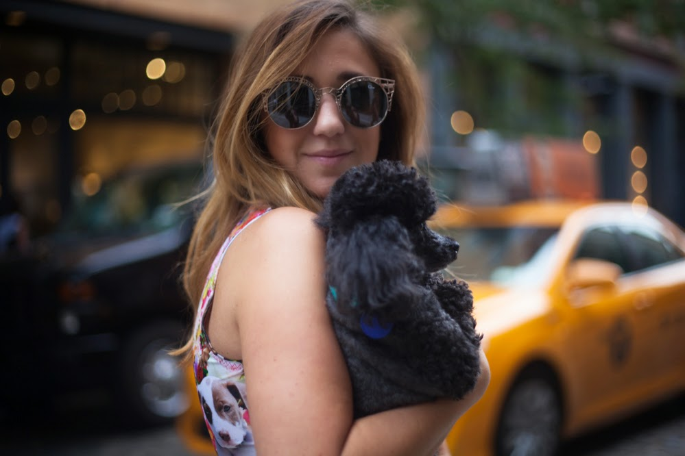 nylon, magazine, shop, quay, sunglasses, new york, style, blog, dc, pretty snake