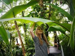 Aimee Baars