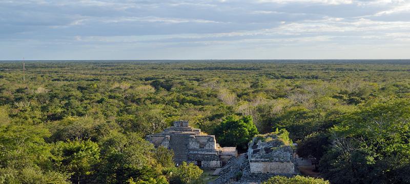 Vue panoramique sur la jungle recouvrant la péninsule du Yucatán