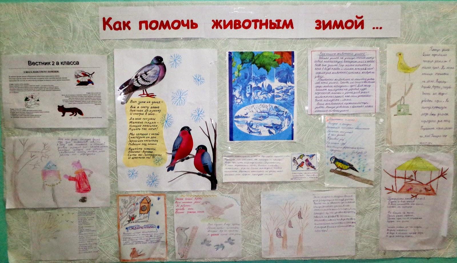 Сочинение заметка в газету 7 класс о животных