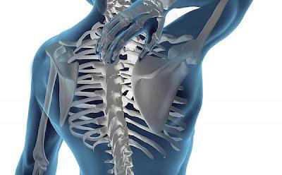 Movilidad de la columna dorsal