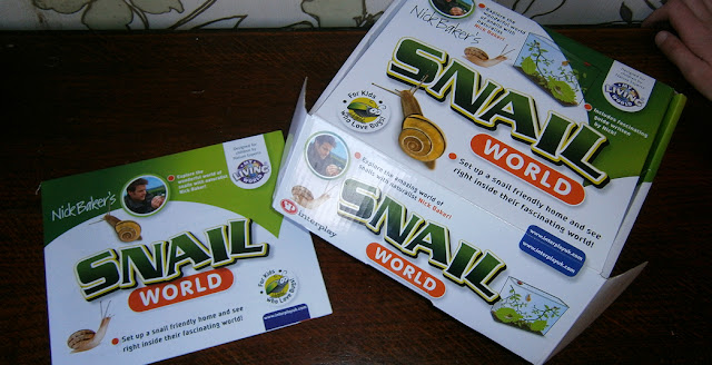 finding insects kit at home children snail world