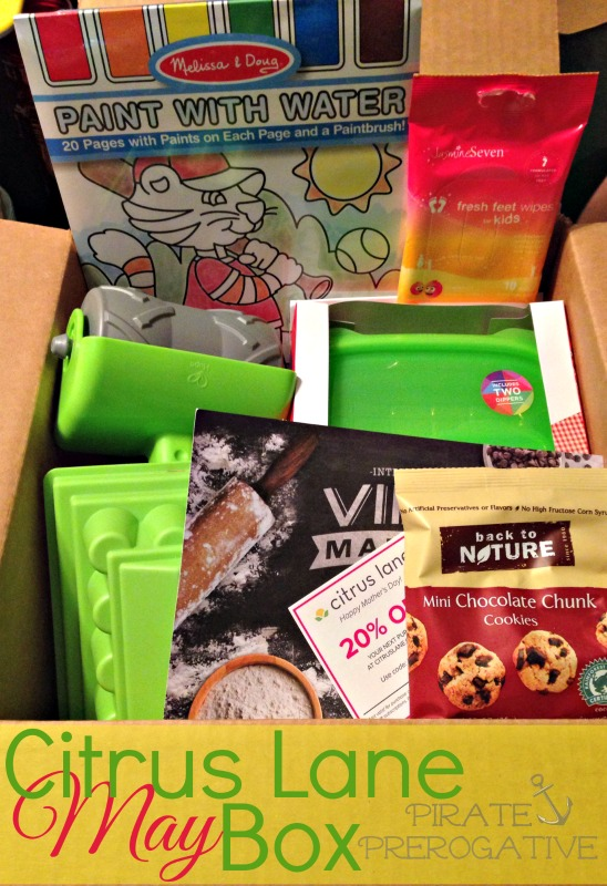 This month's Citrus Lane Box was HUGE! See what we received.
