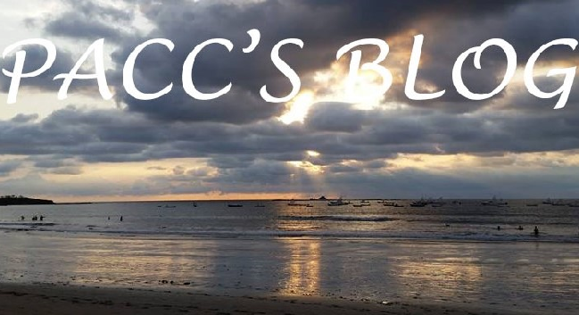 Pacc's Blog