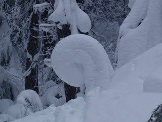 Snow sculptures along trail up Mt Kit Carson