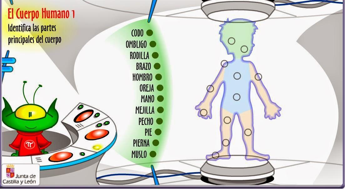 Juegos sobre el cuerpo humano
