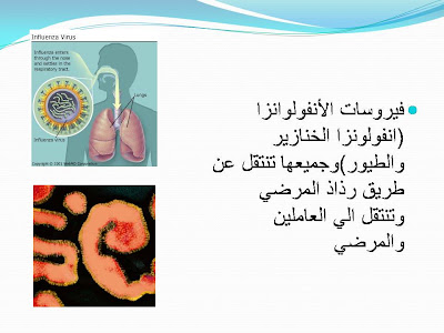 ���� ���� �������� ����� �������� Slide5.JPG