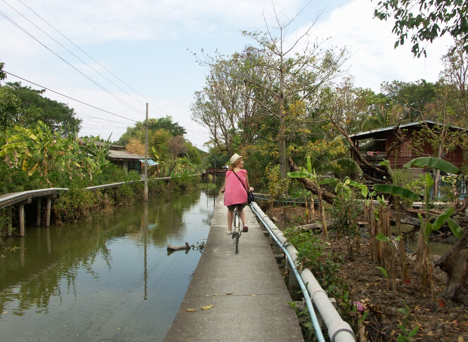 thailand myrte