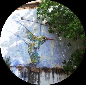 Mural: Humming Bird (before)