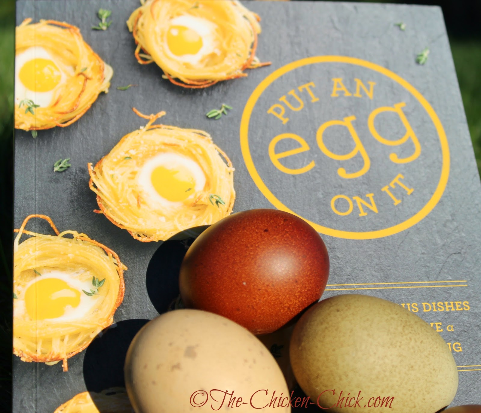 Put An Egg on It by Lara Ferroni GIVEAWAY