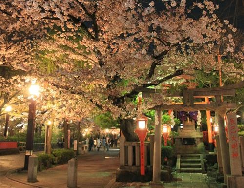 京都市東山区|祇園白川