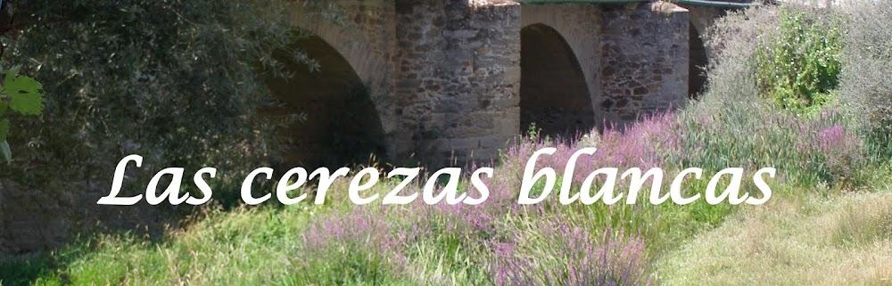 Las cerezas blancas