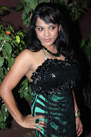Sowmya, Hot, Photos, At, Kasi, Kuppam, Audio, Launch
