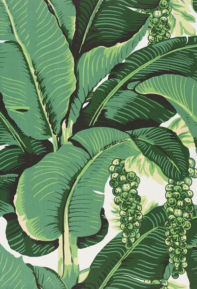 Banana Leaf Wallpaper Brazilliance wallpaper Banana Leaf Wallpaper Bathroom