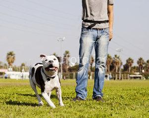 gamebreed.blogspot.com