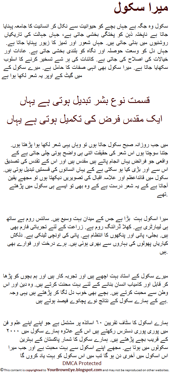 essay in urdu for kids
