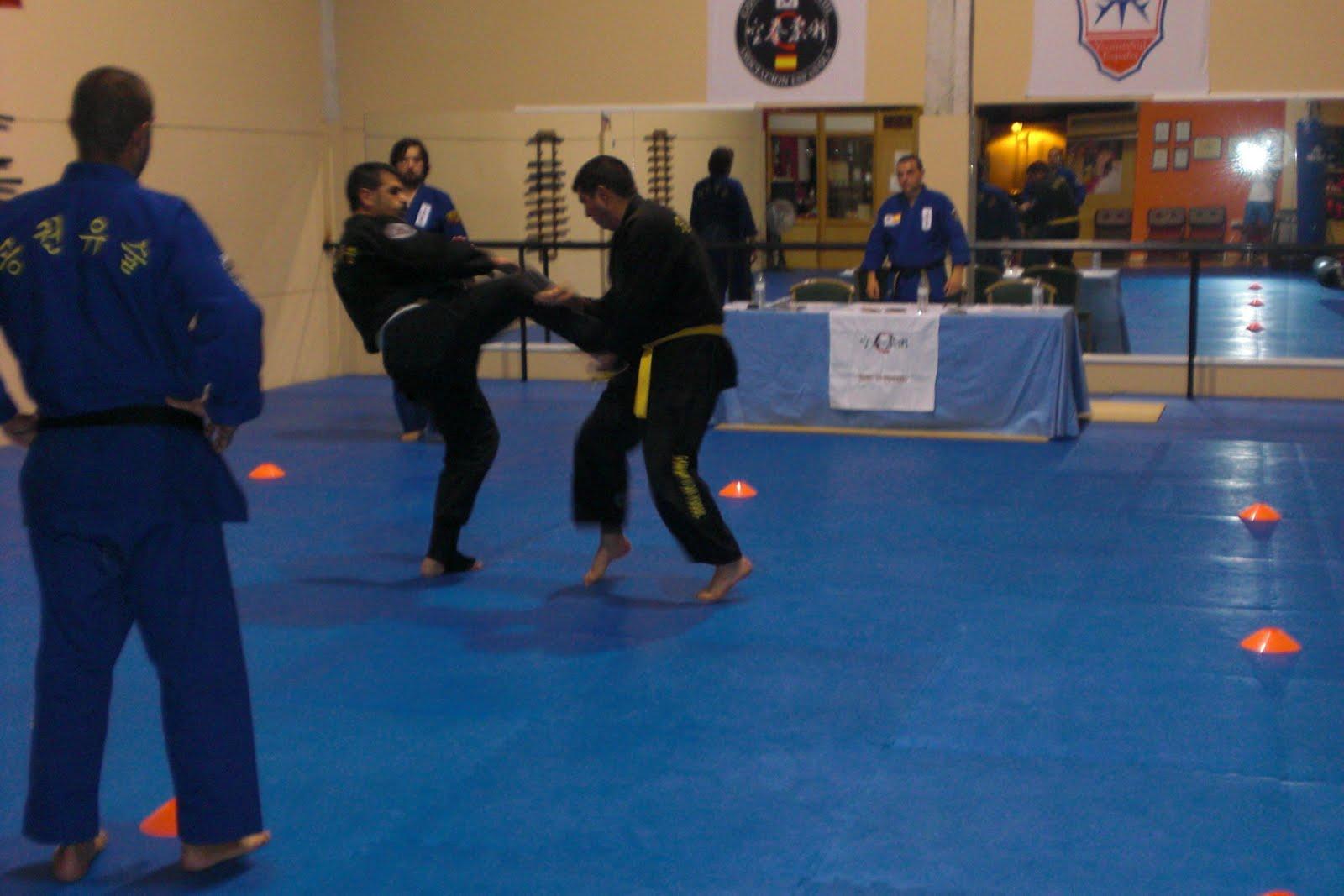 Artes marciales coreanos do san kwan ex menes de grado - Artes marciales sevilla ...