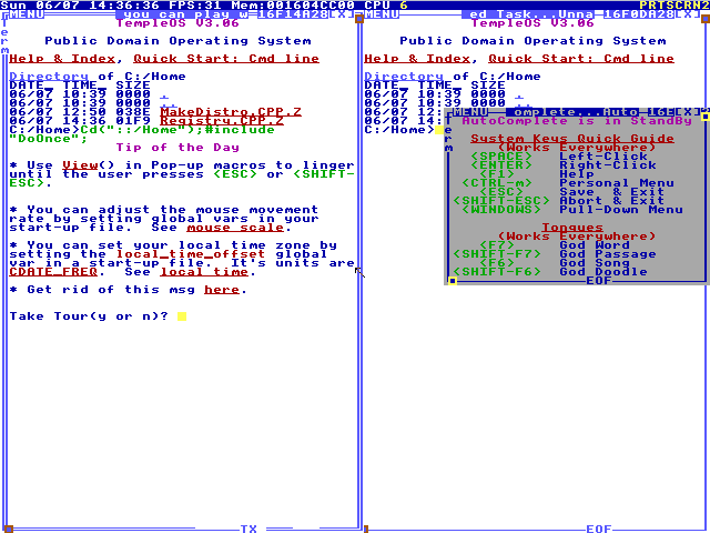 I first heard of TempleOS when N 10 Page 6 En Third Party Development