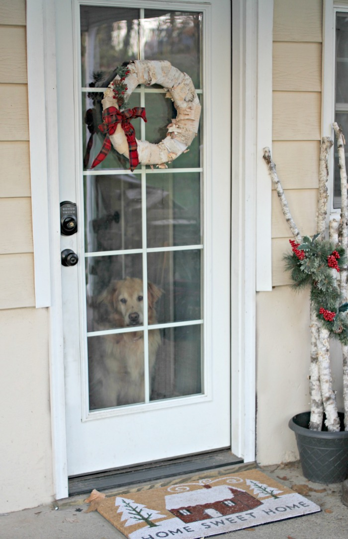 DIY birch bark wreath on glass door - www.goldenboysnandme.com
