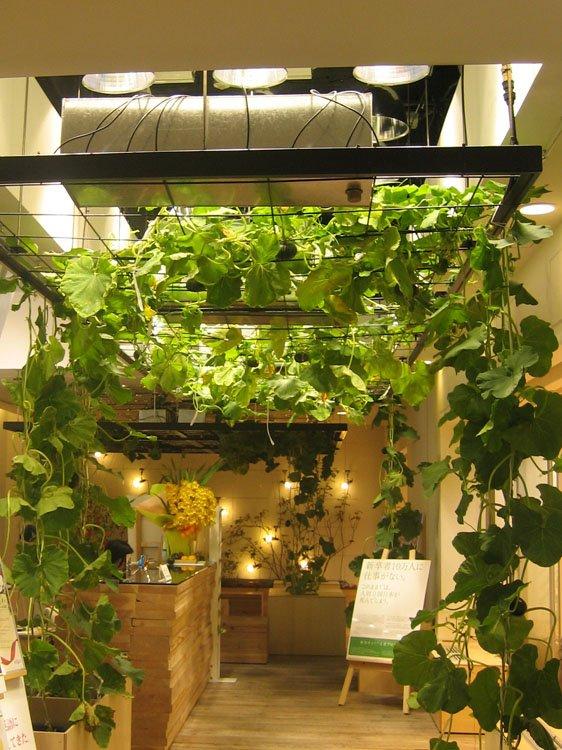 The garden plot you won 39 t find vending machines in this for Indoor gardening machine
