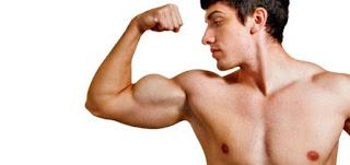 Membentuk Otot Lengan