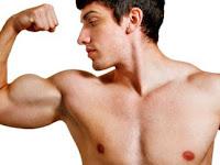 Tips Membentuk Otot Lengan, Mudah Dan Terbukti !!