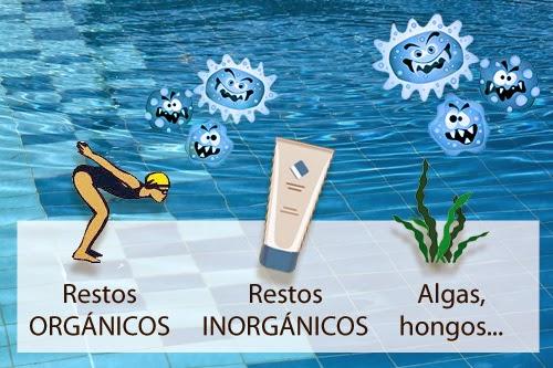 Manual de mantenimiento piscinas casa grande for Manual mantenimiento piscinas