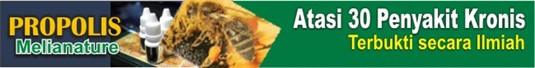 30%2Bpenyakit B Manfaat Propolis Lebah Madu