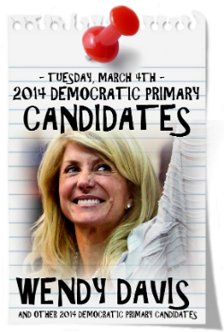 CHECK OUT THIS LIST OF 2014 DEMOCRATIC PRIMARY CANDIDATES