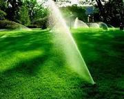 springkle memudahkan penyiraman tanaman hias di taman