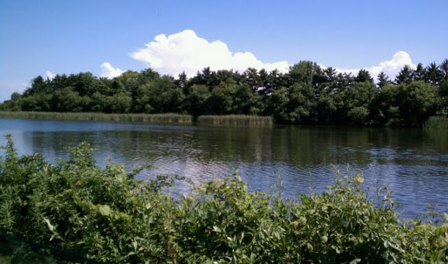 Husker haven 39 s little corner of the world july 4th for Fish hatchery ohio