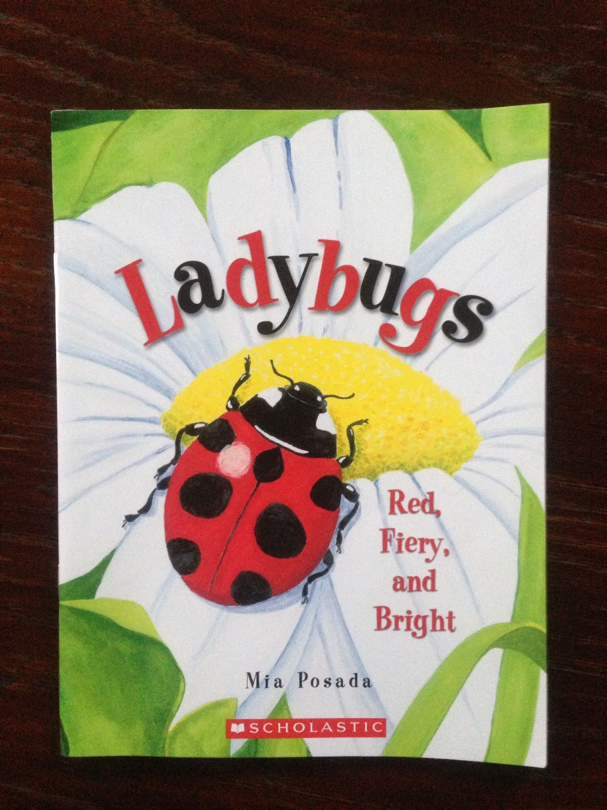 Worksheet First Grade Number Stories number stories for first graders addition word problems a sunny day in grade ladybug math little bit