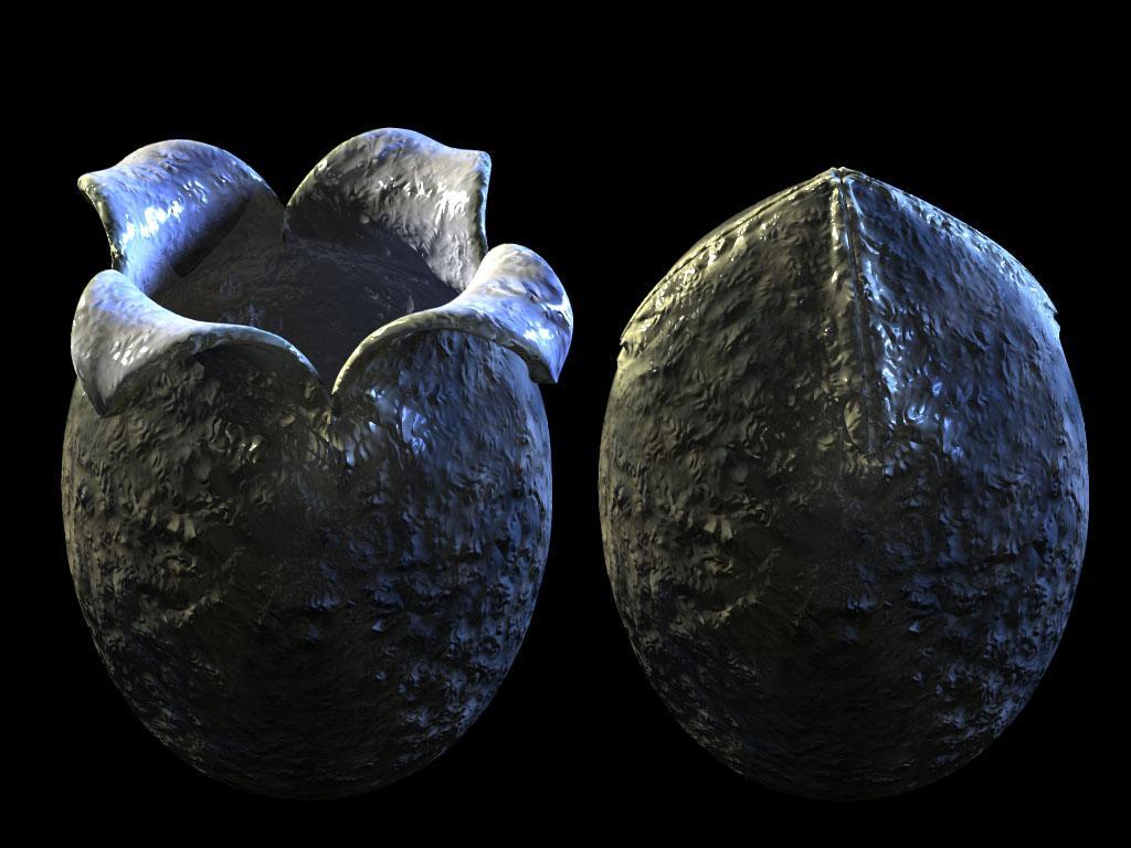 Xenomorph Egg Halls of the Nephilim:...